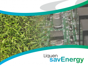 Liquen savEnergy